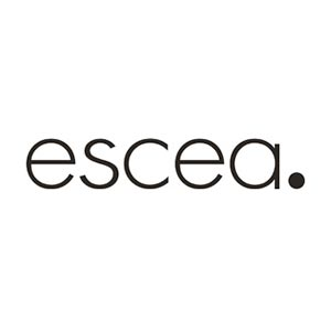 Escea Gas Fireplace Installation Perth